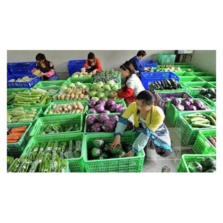 蔬菜配送企业