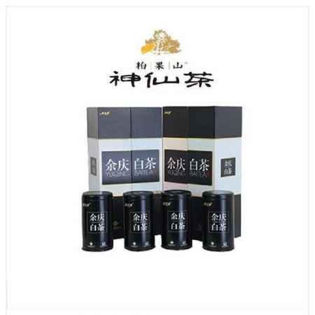 广西茶业批发